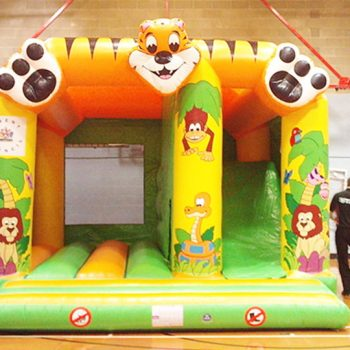 Dry Side Inflatables and Bouncy Castles