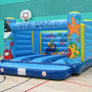 Bouncy Castles and Dry Side Inflatables